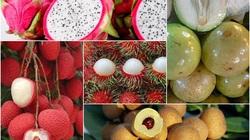 Tiềm năng xuất khẩu rau, quả sang Hoa Kỳ