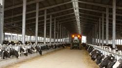 Quảng Ninh: Gần 2.600 tỷ đồng đầu tư vào khu nông nghiệp công nghệ cao