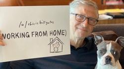 """Bill Gates: """"Mỹ đã bỏ lỡ cơ hội kiểm soát dịch Covid-19 mà không cần phong tỏa"""""""