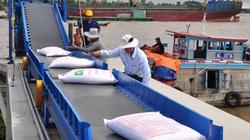 Kết luận chính thức của Thủ tướng về việc xuất khẩu gạo