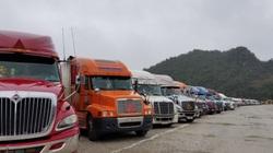 """Dịch covid- 19: Hơn 1.000 xe hàng vẫn """"nằm chờ"""" tại cửa khẩu biên giới"""