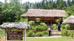 Khám phá Homestay xinh đẹp giữa rừng Xuân Sơn