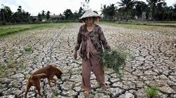 Hạn mặn chưa từng thấy, 5 tỉnh miền Tây công bố tình huống khẩn cấp