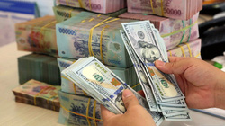 Tỷ giá biến động, Việt Nam vẫn mua thêm được 4 tỷ USD