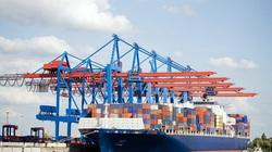 Cục Hàng hải giảm phí dịch vụ cho DN vận tải biển bị ảnh hưởng Covid-19