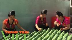 Nông thôn mới Sơn La: Nhiều giải pháp giúp nông dân làm giàu