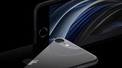 Người dùng Trung Quốc không mấy mặn mà với iPhone SE 2020 vừa ra mắt