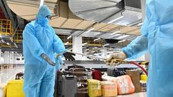 Sân bay Vân Đồn đón thêm 308 kỹ sư Hàn Quốc sang Việt Nam làm việc