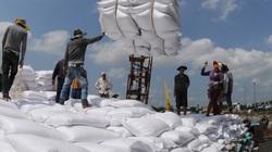 Gần 7.000 tấn gạo theo hạn ngạch được xuất khẩu