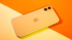 Doanh số iPhone của Apple có thể giảm 36% trong quý II