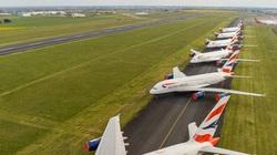 Các hãng hàng không đau đầu ngăn chim làm tổ trên máy bay