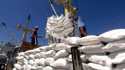 Gần hết ngày 26/4, gạo xuất khẩu chỉ đạt 46% hạn ngạch