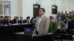 Phúc thẩm vụ thâu tóm đất vàng Đà Nẵng: Phan Văn Anh Vũ viết gì trong đơn kháng cáo?