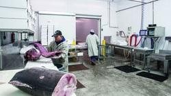 """Hiệu ứng EVFTA, xuất khẩu thủy sản lập tức """"thay da, đổi thịt"""""""