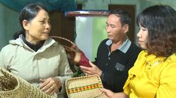 Dắt díu đàn con rời quê, người phụ nữ thoát nghèo nhờ trồng cói trên rừng