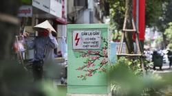 """Bốt điện Hà Nội """"diện áo mới"""" chống quảng cáo rao vặt"""