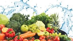 Ý thức trách nhiệm về an toàn thực phẩm của người dân, doanh nghiệp còn còn hạn chế