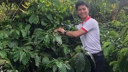 Kỹ sư xây dựng tìm hướng đi cho cà phê organic