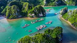Quảng Ninh: Quy hoạch Khu nuôi trồng thủy sản ngoài vùng lõi Vịnh Hạ Long