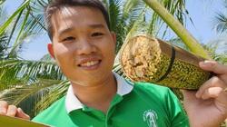 Thanh niên miền Tây làm nghề lạ: Massage hoa dừa để... lấy mật, 1 hoa chảy ra 25 lít, kiếm 250.000 đồng