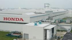 Honda lỗ 276 triệu USD trong quý I/2020 vì dịch Covid-19