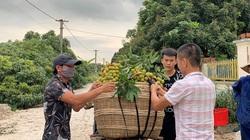 Quảng Ninh: Chi hàng chục tỷ làm thương hiệu Vải chín sớm Phương Nam, ra chợ lại phải gắn mác khác