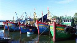 Chưa tìm thấy 4 ngư dân mất tích do bị tàu Indonesia truy đuổi