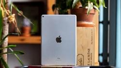 Apple có thể sẽ ra mắt hai mẫu iPad mới với màn hình lớn hơn