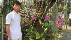 Trồng vườn lan rừng 2.000 giò, trai đẹp xứ Huế là nghệ nhân hoa lan ở tuổi 23