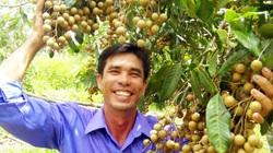 Sóc Trăng: Nông dân đổi đời nhờ sản xuất nông nghiệp thông minh