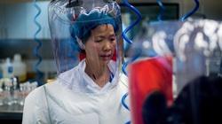 Nhà virus học tại phòng thí nghiệm Vũ Hán tiết lộ mới nhất về virus corona