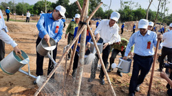 Mừng sinh nhật Bác: TP.HCM trồng hơn 500 cây xanh bảo vệ môi trường