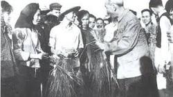 Bác Hồ - Người lãnh tụ cả đời gắn bó với nông dân Việt Nam