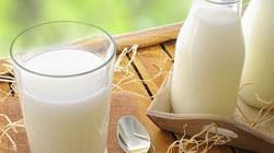 EU: Xuất khẩu sữa giảm, tiêu dùng đình trệ do virus corona