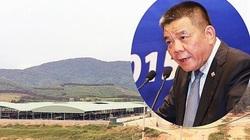 Đại án Trần Bắc Hà: Các bị can đã dùng thủ thuật để chiếm tài sản BIDV như thế nào?