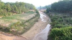 Cây khô, người khát ở Kon Tum