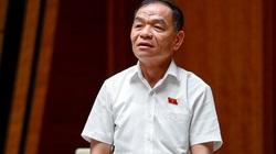 ĐBQH Lê Thanh Vân dẫn việc đường lưỡi bò và các nguy cơ để đề nghị có Luật an ninh kinh tế