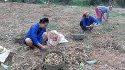 Sáng tạo trong tuyên truyền để nông dân hiểu và làm theo pháp luật