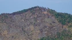 Đã xác định được người đốt phá núi Voi