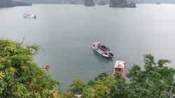 Quảng Ninh: Thành lập Khu rừng đặc dụng Vịnh Hạ Long