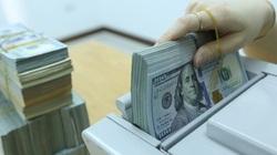 Tỷ giá ngoại tệ hôm nay 28/5: Đồng USD trên đà hồi phục