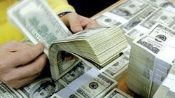 Vốn đầu tư nước ngoài sụt giảm