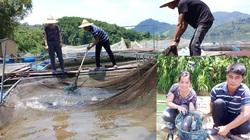 """Nuôi nhốt toàn cá đặc sản quý hiếm, xưa ví như """"thủy quái dòng sông"""" mà dân ở đây đổi đời"""