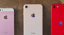 Apple 'thất hứa' với người hâm mộ iPhone SE vì xu thế chung