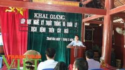 Điện Biên: Mở lớp dậy nghề giúp hội viên nông dân phát triển kinh tế