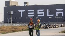 Tesla tạm dừng hoạt động sản xuất tại siêu nhà máy ở Trung Quốc