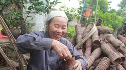 Quảng Ninh: Cả làng giàu có nhờ bắt con bò ngang, nhát chết