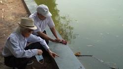 """Hà Nội: Người dân phấn khởi vì bờ kè Hồ Gươm được """"thay áo mới"""""""