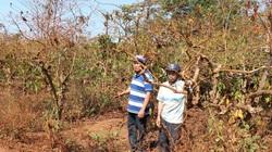 Gia Lai: Tỉnh chỉ đạo, huyện đã chi trả tiền đền bù cho dân