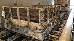 Hãng bay kiếm đậm nhờ chở lợn, khẩu trang mùa dịch
